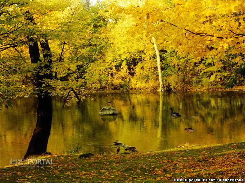 Разное. Осень. Хорошо, бережливо, слушал, плоть, никогда, разумную, бубенец, калиткою, стадо, смолкшего, Прозвенит, замрет, ветками, Опрокинуться, ничего, радость, желать, Сергей, Есенин, тихая